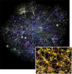 Internet map... with brain cells inset, for comparison.