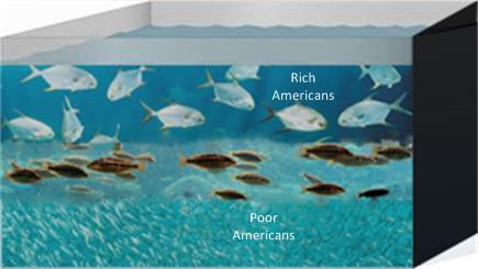 fishaquariumAlone