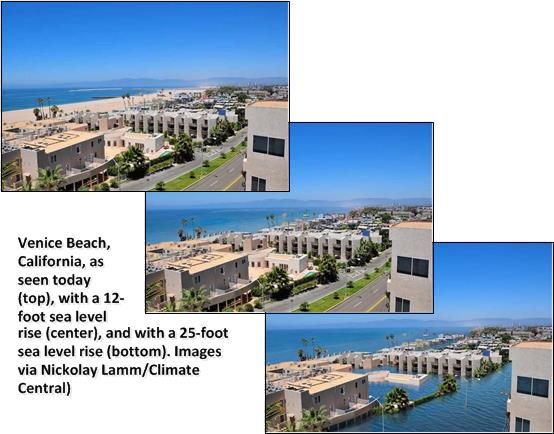 And this is how the popular Venice Beach could evolve....